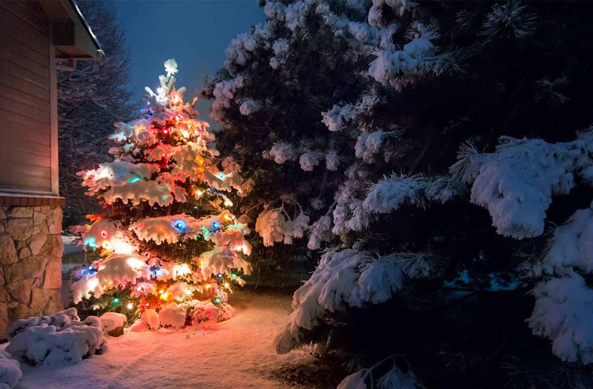 weihnachtsdeko-garten